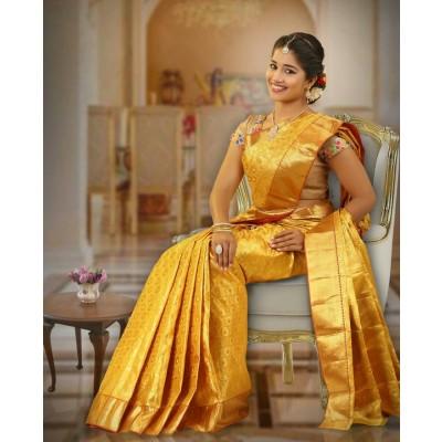 Kanchipuram Silk Mark Saree